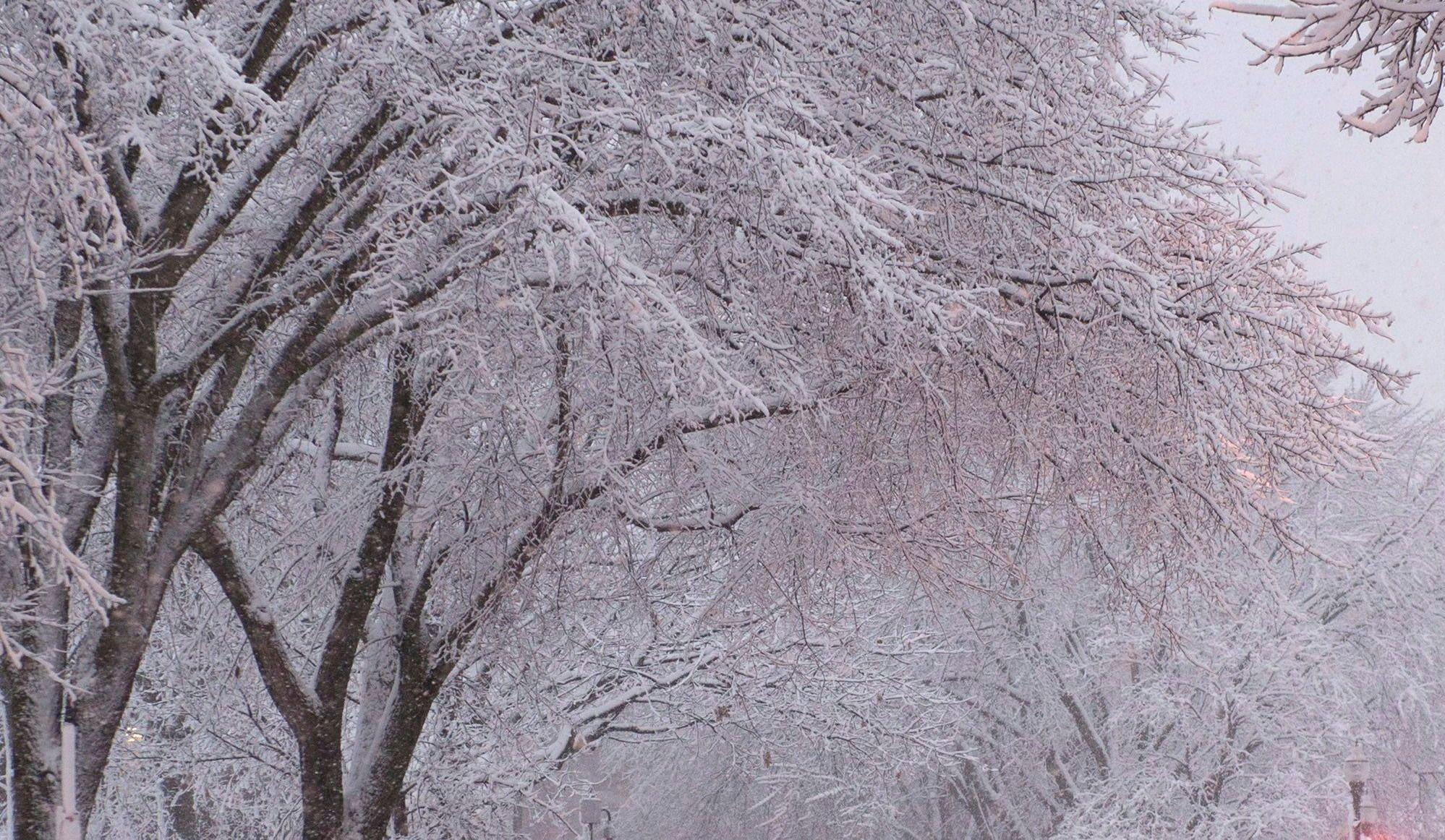 Un quinquagénaire retrouvé mort d'hypothermie dans Limoilou