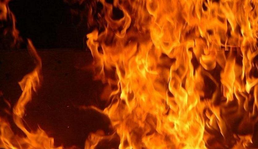 Lévis: 80 vaches meurent dans l'incendie d'une ferme laitière