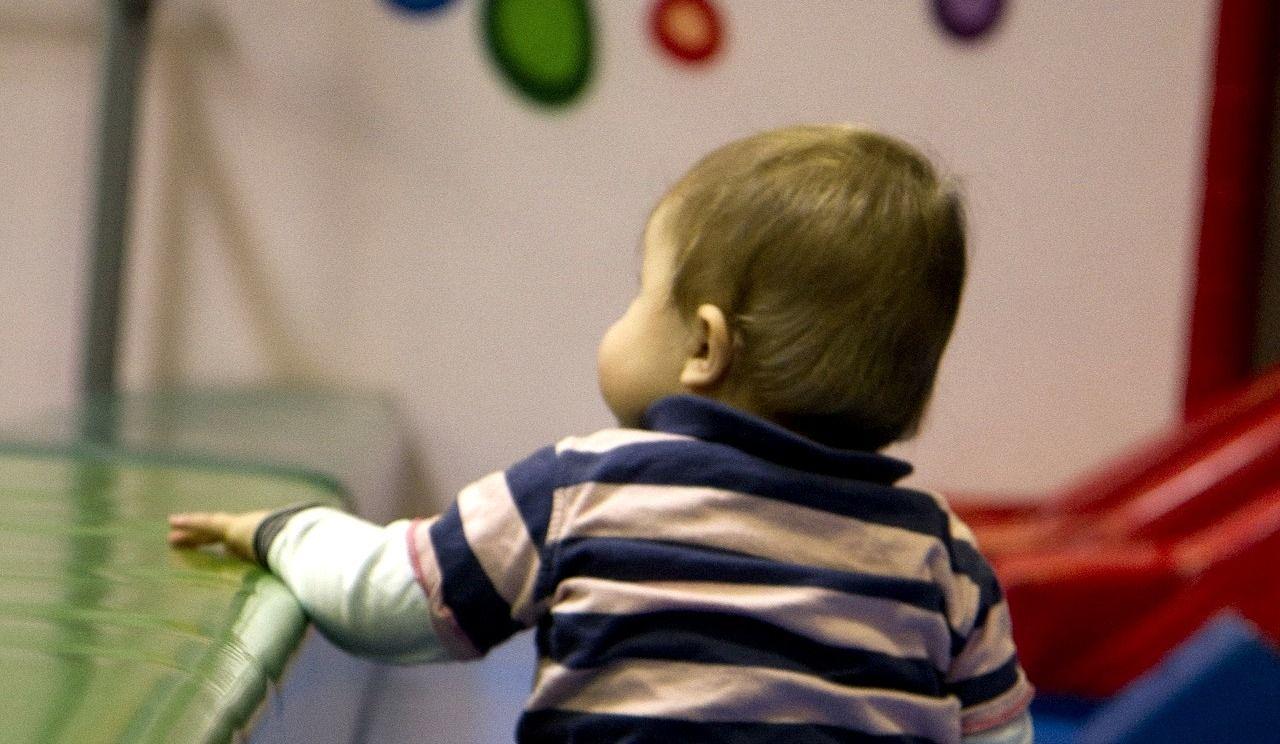 Bébés du printemps: le ministre Fortin maintient le cap