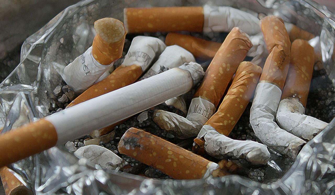 Le cannabis aura t-il un effet sur le tabagisme ?