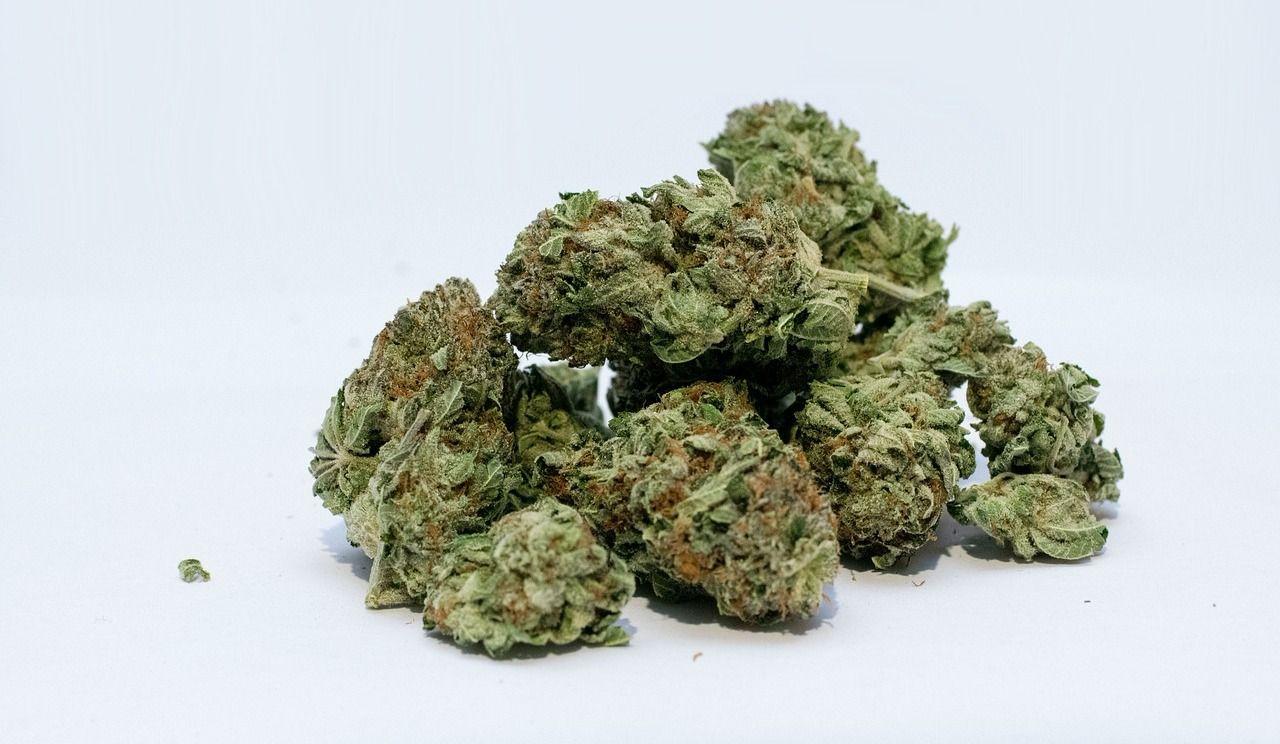 Environ 5,7 milliards de dollars dépensés en cannabis au Canada