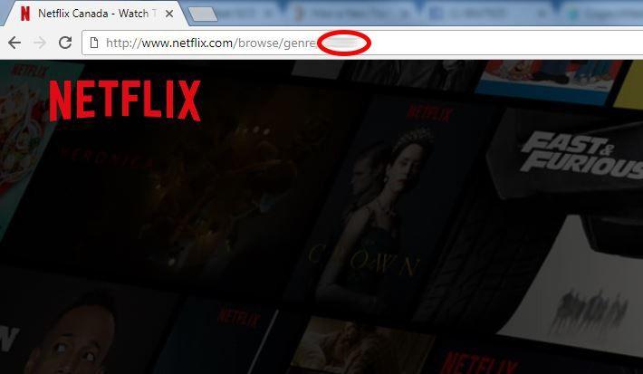 "244 ""Secret Codes"" for Netflix"